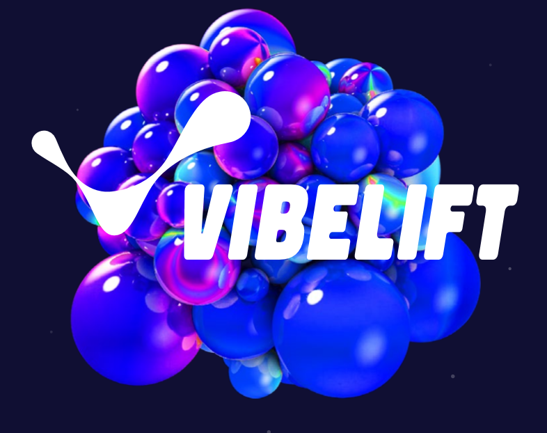 Sakalas Uždavinys VIBELIFT festivalyje